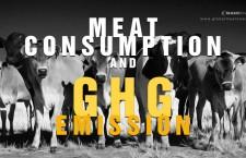 ชาวอเมริกันหนักใจเรื่องการบริโภคอาหารกับการปล่อยก๊าซเรือนกระจก