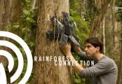 มือถือเก่าใช้สอดแนมผู้ลักลอบตัดไม้เถื่อนและล่าสัตว์ป่า