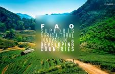 FAO สนับสนุนนวัตกรรมการเกษตรในประเทศกำลังพัฒนา