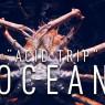 ถึงเวลาต้องปกป้องมหาสมุทรจากก๊าซคาร์บอนไดออกไซด์