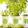 ร้านกาแฟ…รักษ์โลก