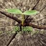 ISO 14080 ช่วยต้านภาวะโลกร้อน