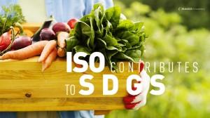 ISO-CONTRIBUTES--TO-SDGS-2