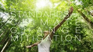 STANDARDSFOR--CLIMATE-CHANGE--MITIGATION2